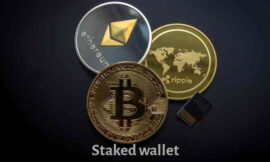 Stakedwallet Review: Legit or Scam? Find Out Here