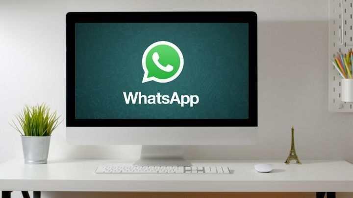 whatsapp TV