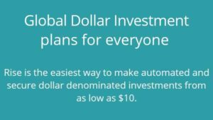 about rise vest dollar investment