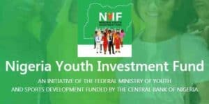 about Nigeria youth investment fund